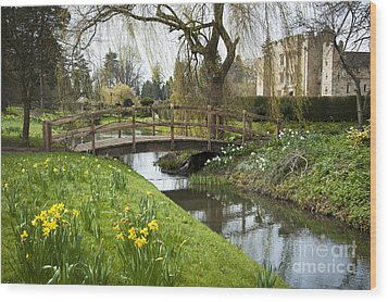 Heaver Castle In Spring Wood Print by Donald Davis