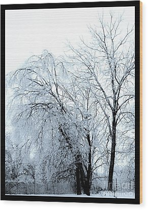 Heavy Ice Tree Redo Wood Print by Marsha Heiken