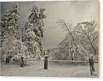 Heavy Laden Blizzard Wood Print by Lois Bryan
