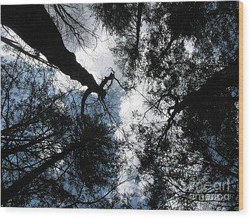 Hecate 3 Wood Print