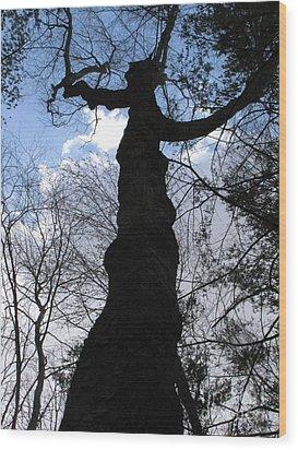 Hecate Wood Print