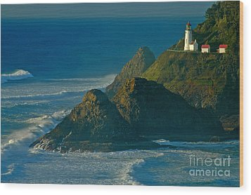 Heceta Head Seascape Wood Print by Nick  Boren