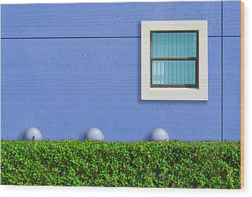 Hedge Fund Wood Print by Paul Wear