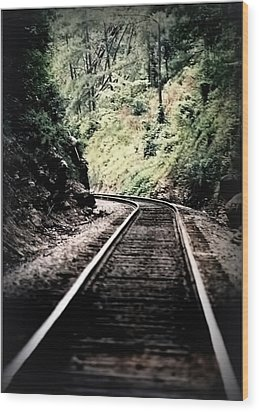 Hegia Burrow Railroad Tracks  Wood Print by Lesa Fine