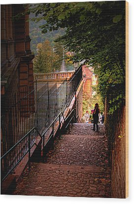 Wood Print featuring the photograph Heidelberg Stairway by Jim Hill