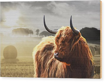 Heilan Coo On Fire Wood Print