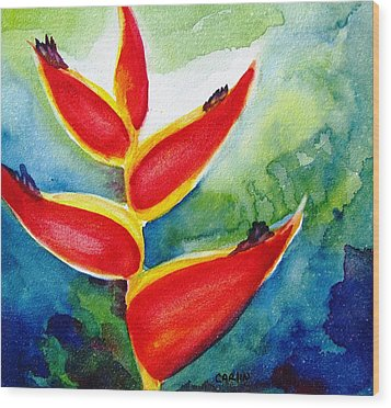 Heliconia - Abstract Painting Wood Print by Carlin Blahnik