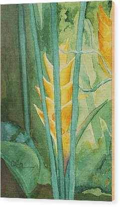 Heliconia Wood Print by Diane Cutter
