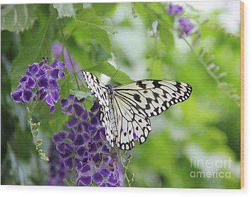 Hello Beauty Wood Print