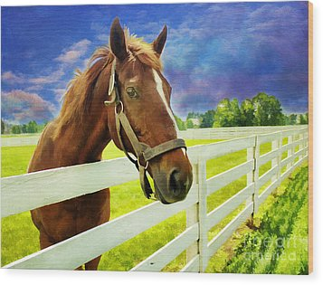 Hello From The Bluegrass State Wood Print by Darren Fisher