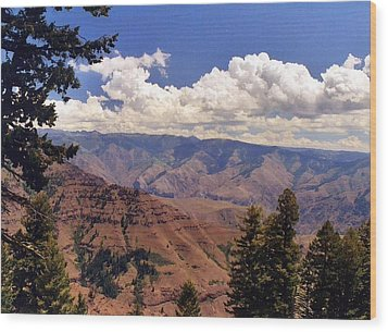 Wood Print featuring the photograph Hells Canyon by Debra Kaye McKrill