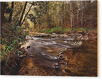 Hells Hole At The Chauga River Wood Print by Brent Craft