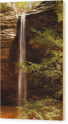 Wood Print featuring the photograph Hemlocks And Waterfall by Haren Images- Kriss Haren