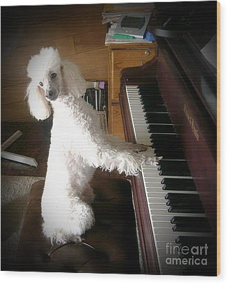 Henri Plays The Piano Wood Print