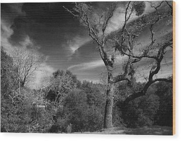 Here As I Stand Wood Print by Laurie Search