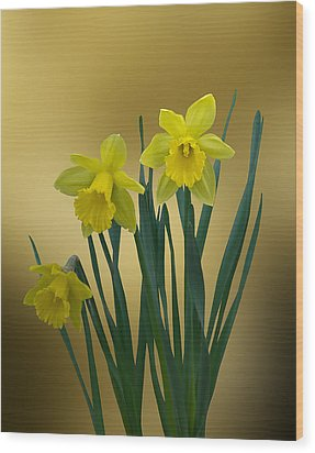 Wood Print featuring the photograph Here Comes Spring... by Judy  Johnson