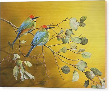 Here Comes The Sun - Rainbow Bee-eaters Wood Print by Frances McMahon