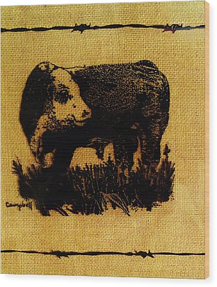 Polled Hereford Bull 12 Wood Print
