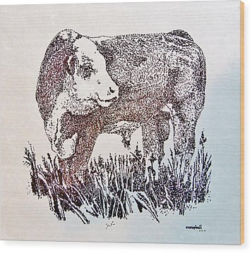 Polled Hereford Bull  Wood Print by Larry Campbell