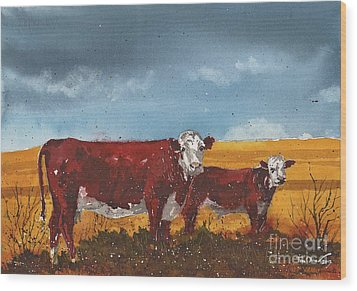 Hereford Cow And Calf Wood Print by Tim Oliver