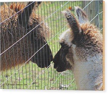 Heres A Llama Theres A Llama Wood Print