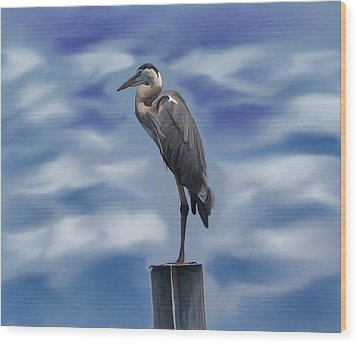 Heron 1 Wood Print by Karen Sheltrown
