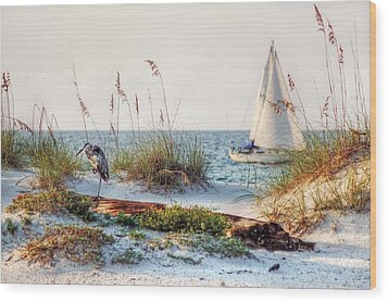 Heron And Sailboat Wood Print by Michael Thomas