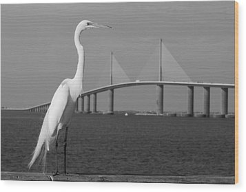 Wood Print featuring the photograph Heron And Skyway by Daniel Woodrum