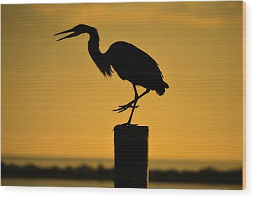Heron At Sunrise Wood Print by Leticia Latocki