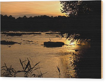 Wood Print featuring the photograph Heron At Sunset by Andy Lawless