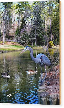 Heron Haven Wood Print