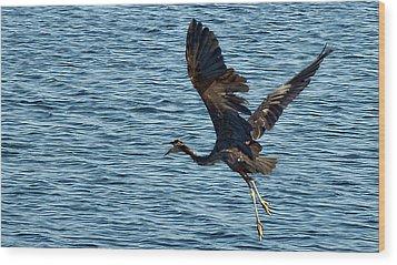Heron In Flight Wood Print by Ron Roberts