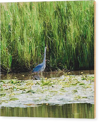 Wood Print featuring the photograph Heron by Leif Sohlman