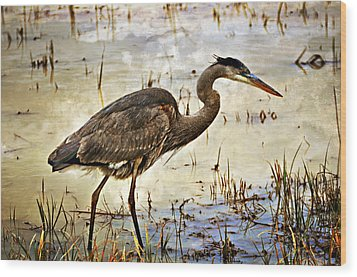 Heron On A Cloudy Day Wood Print by Marty Koch