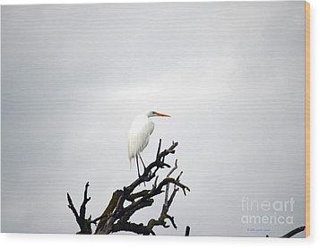 Heron On A Dead Tree Wood Print