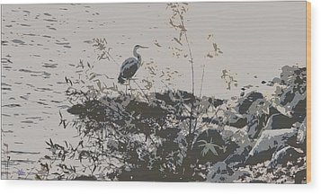 Silent Lake Wood Print by Douglas MooreZart