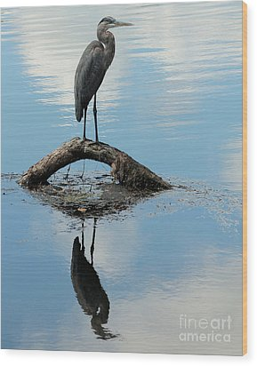Wood Print featuring the photograph Heron Reflection by Kenny Glotfelty