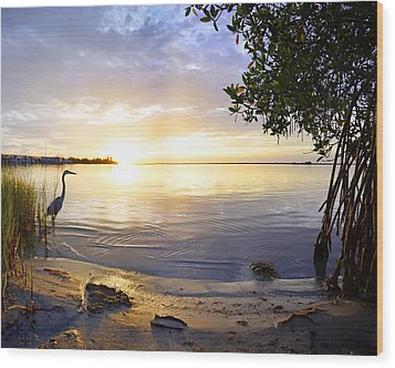 Heron Sunrise Wood Print by Francesa Miller