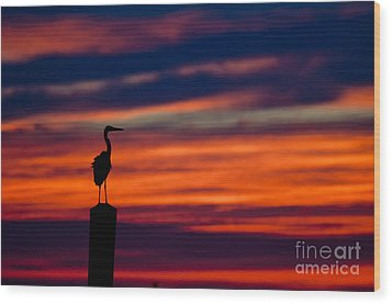 Heron Sunset Silhouette Wood Print