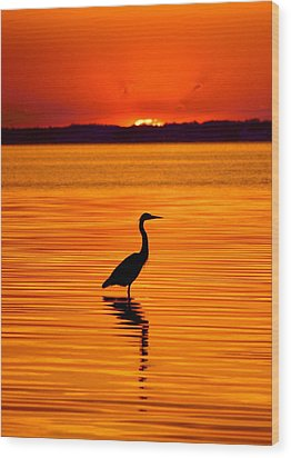 Heron With Burnt Sienna Sunset Wood Print