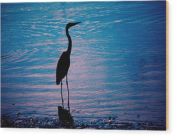 Herons Moment Wood Print