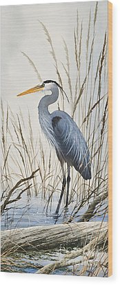 Herons Natural World Wood Print
