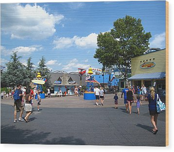 Hershey Park - 121245 Wood Print by DC Photographer