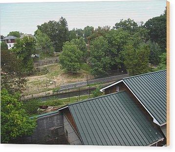 Hershey Park - 12126 Wood Print by DC Photographer