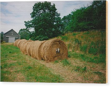 Hey- Hay Roll Wood Print