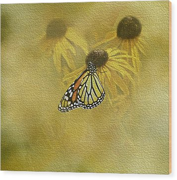 Hey Susan There Is That Butterfly Again Wood Print by Diane Schuster
