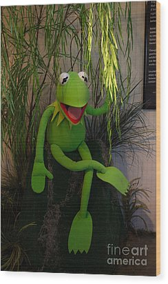 Hi Ho  Kermit The Frog Here  Wood Print by Jim McCain