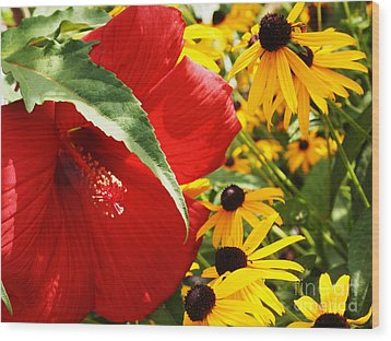 Hibiscus And Black Eyed Susans Wood Print