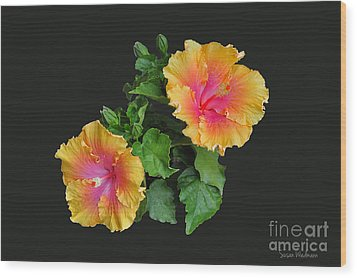 Wood Print featuring the photograph Hibiscus Duo by Susan Wiedmann