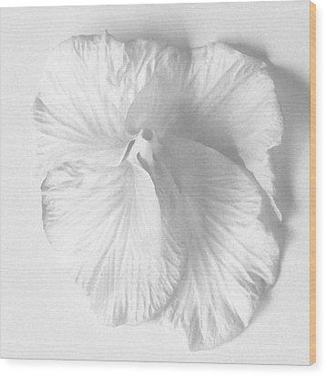 Hibiscus II Wood Print